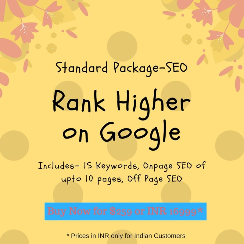 Standard Package SEO services by The Buzz Stand